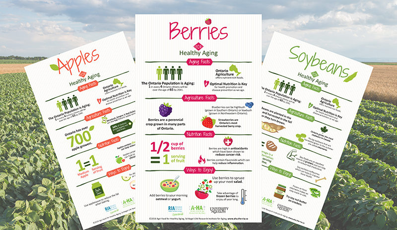 Agriculture for Healthy Aging info graphics
