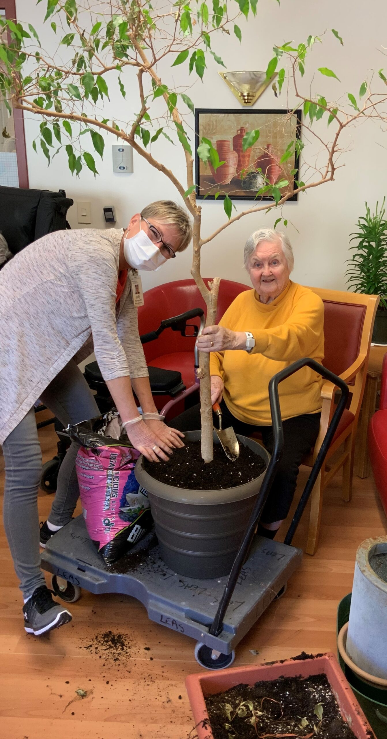 A resident and a team member potting a tree